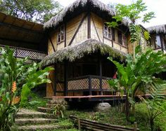 The beautiful eco-lodge -cloud forest