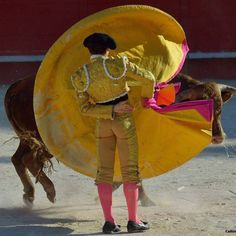 TAUROMAQUIAS Matador Costume, Bull Painting, Photography Lessons, Cattle, Dark Art, Art Projects, My Arts, Fine Art, Drawings
