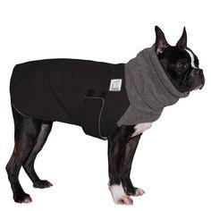 Boston Terrier Winter Coat (Black with Grey Hood)