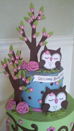 Cute Baby Shower Owl cake! #shower #cake #owl — Baby Shower