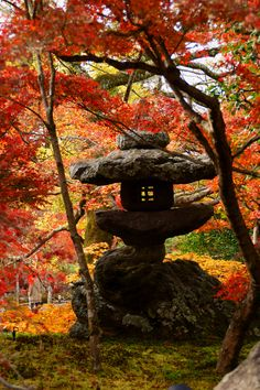 京都の秋(永観堂)/Eikan-dou temple)