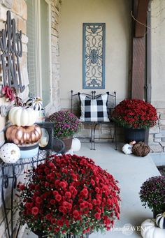 copper, jewel toned fall front porch - fall decor ideas Lets throw out the orange and yellow and mix up our fall decor with a copper, jewel toned fall front porch theme. How about adding black and white pattern? Fall Home Decor, Autumn Home, Decks And Porches, Fall Porches, Front Porches, House With Porch, Front Door Decor, Porch Decorating, Decorating Ideas