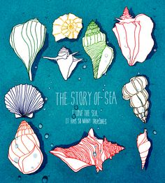 The story of the sea