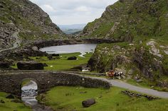 Gap of Dunloe, a narrow mountain pass between Macgillycuddy's Reeks (west) and Purple Mountain (east) in County Kerry, Ireland. We rode all the way through this road in a jaunting cart pulled by an Irish cob like those in this photo. It was fantastic!!