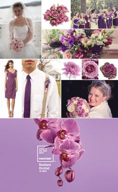 2014 Pantone Color of the Year: Radiant Orchid! Purple Orchid Wedding, Pink Grey Wedding, Purple Orchids, Diy Wedding Flowers, Wedding Ideas, Romantic Ways To Propose, Most Romantic, Fifty Flowers, Orchid Color