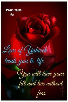 Prayer Warrior, Gods Promises, Encouragement Quotes, Spiritual Quotes, Prayers, Spirituality, Inspirational Quotes, Words, Life