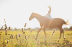 Horse stable wedding photoshoot