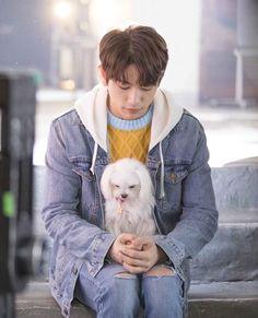 jinyoung puppy he is psychometric aesthetic cute Got7 Jinyoung, Youngjae, Yugyeom, Park Jinyoung, Jaebum Got7, Girls Girls Girls, Mark Jackson, Jackson Wang, Chanyeol