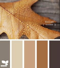 gorgeous color palette