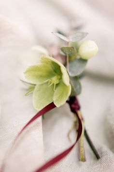 Buttonhole Groom Red Ribbon Dreamy Woodlanders Folk Wedding Ideas http://www.jobradbury.co.uk/