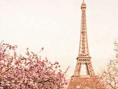 Bella Torre Eiffel