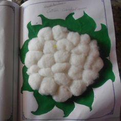 cotton cauli flower!