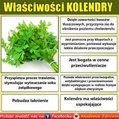Korzyści zdrowotne kolendry - Zdrowe poradniki Spices, Herbs, Wellness, Gardening, Magic, Healthy Recipes, Food, Spice, Garten