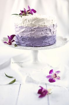 Chocolate Vanilla Layer Cake with Black Currant Ganache and Swiss Meringue Buttercream