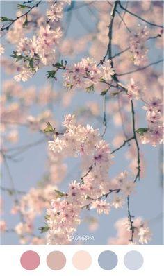 LENTE BLOESEM - Voorjaar - Mooie zachte blauw en roze voor een baby kamer