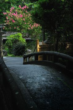 Kyoto Gyoen, Japan 京都御苑, The Path Is the Goal...