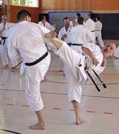 #karate #karatedo #shotokan #schwarzgurt #dan #meistergrad #meister #budo #budoka #kuroobi #blackbelt #kick #yokogeri #kekomi #randori #kumite #youtube #kampfkunst #martialarts #karetefamily #karatemaster #karateislife #karateman #karate4live #karateteam Aufnahme: Roland Lowinger