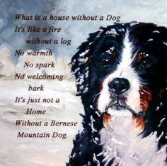 Bernese Mountain DOG NEW Hardboard Tile DOG Lover Gift NO 3 Sandra Coen Artist | eBay