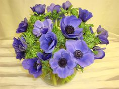 Google Image Result for http://www.flowersbychris.com/products/flowers3LG.jpg