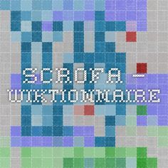 scrofa — Wiktionnaire