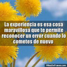 La experiencia es esa cosa maravillosa que te permite reconocer un error cuando lo cometes de nuevo