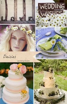 Daisies Wedding Flowers ~ Get To Know Your Wedding Flowers