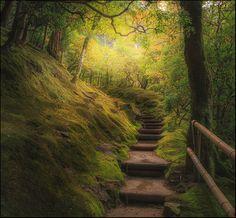 Stairway to heaven by Pavel Minaev via 500px. Ginkaku-ji, Kyoto, Japan
