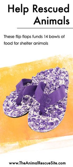 Every purchase at The Animal Rescue Site funds meals for Shelter Animals in need.   Shopping + Helping Animals = Pawsome! Find flip flops  here: www.shop2give.us/PurplePaws