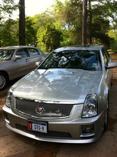 Roadtrip -- Pics Under the Trees - Cadillac Conversations