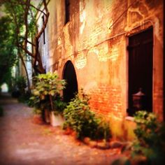 Secret alley in #historic #Charleston by @Charleston Area CVB, via Flickr
