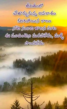 Life Lesson Quotes, Song Quotes, Life Lessons, Life Quotes, Love Quotes In Telugu, Telugu Inspirational Quotes, Famous Quotes From Songs, Best Quotes, Positive Quotes For Life
