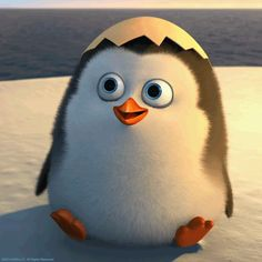 Hello!  - penguins-of-madagascar Photo I LOVE THIS
