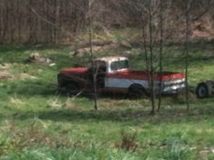 Chevy C-10 in the meadow