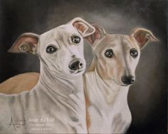 Whippets 50cm x 40cm Oil on stretched canvas Available for sale