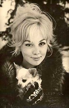 Mylene Demongeot (born 1935) with her chihuahua. Demongeot is a top French actress whose performance in the German production of The Crucible (1957) remains her highest achievement. In the United States she co-starred with David Niven in Otto Preminger's Bonjour Tristesse (1958). She still plays character roles in such films as Oscar et la dame rose (2009) and Beneath the Rooftops of Paris (2009).