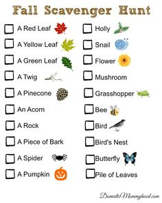 Fall is the perfect time of year for a Fall Scavenger Hunt and I created this cute printable just for you guys! We enjoy going for walks in the fall and feeling the cool brisk air blowing our hair around. Autumn Activities, Learning Activities, Preschool Activities, Kids Learning, Outdoor Learning, Nature Activities, Family Activities, Teaching Ideas, Nature Scavenger Hunts