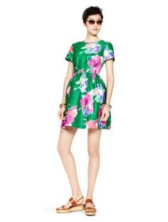 Kate Spade Stelli Dress. Pretty and Classic $290 (sale)