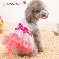 2016 Soft Tutu Pet Dress Pet Clothes Dog Sexy Lips Cat Clothing For Samll Pet Shirt Spring Dress Puppy Skirt Summer Clothing 15 // FREE Shipping //     Get it here ---> https://thepetscastle.com/2016-soft-tutu-pet-dress-pet-clothes-dog-sexy-lips-cat-clothing-for-samll-pet-shirt-spring-dress-puppy-skirt-summer-clothing-15/    #catoftheday #kittens #ilovemycat #lovedogs #pup