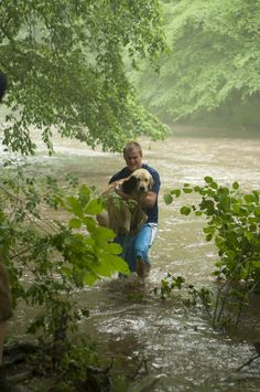 Heroes Rescue Helpless Puppy From a Flooded River