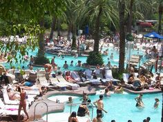 Flamingo Hotel Pool, Las Vegas   - Learn all about My First Hacked Travel Trip (to Las Vegas) and how I saved $1,023.88 http://travelnerdnici.com/first-hacked-travel-trip-las-vegas/ - Explore the World with Travel Nerd Nici, one Country at a Time. http://TravelNerdNici.com