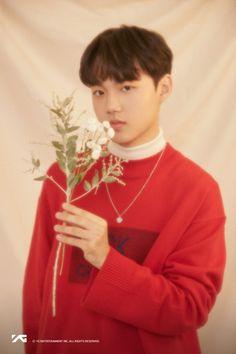 YGTB Doyoung Yg Entertainment, Korean Celebrities, Celebs, Yg Trainee, Im Going Crazy, Hyun Suk, K Pop Star, Flower Boys, Treasure Boxes
