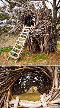 Amazing outdoor nest bed