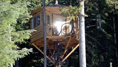 treehouse cabin with bicycle powered elevator   Kid Builds Bicycle Powered Elevator for his DIY Tiny Treehouse Cabin