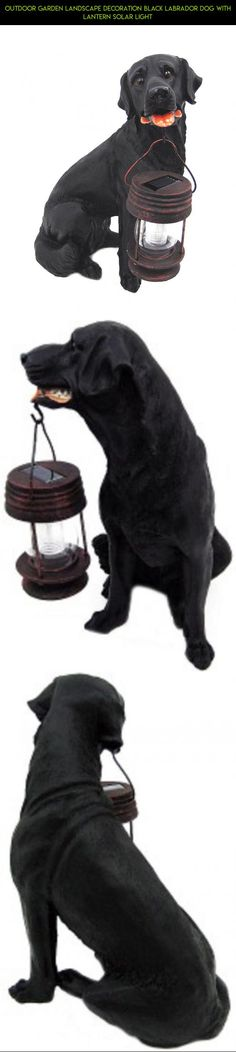 Outdoor Garden Landscape decoration Black Labrador Dog With Lantern Solar Light #shopping #camera #solar #drone #plans #fpv #racing #gadgets #lights #technology #kit #tech #parts #outdoor #products #decor