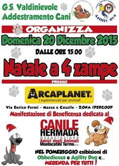 """Natale a 4 zampe"" per il canile Hermada di Montecatini :http://www.qualazampa.news/event/natale-a-4-zampe-per-il-canile-hermada-di-montecatini/"