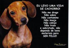 From Brazil