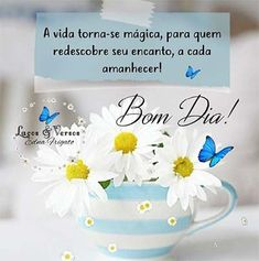 Photo Finder, Day For Night, Free Stock Photos, Good Morning, Place Card Holders, Messages, Words, Dena, Portugal