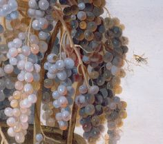 Still Life with Grapes and other Fruit (detail), Luca Forte, about 1630s