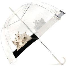Westies Umbrella♥