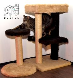 Order now! Custom made condos and playground assemblyes for your kittens special needs!